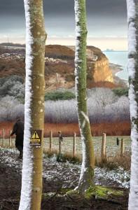 Close to Home: February - Eccelsbourne Glen